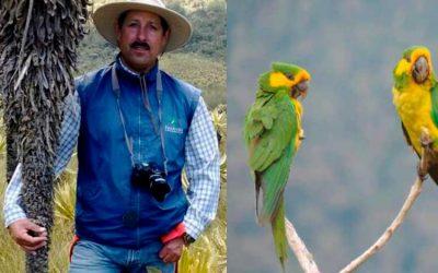 Asesinado líder ambiental defensor del loro orejiamarillo entre Génova y Roncesvalles