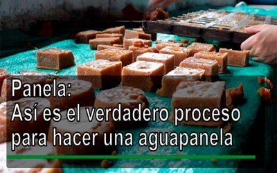 En video: el verdadero proceso para hacer una aguapanela
