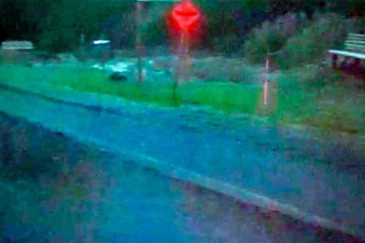 Alerta vía Rio Verde - Barragán
