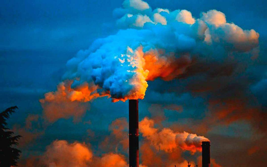 Se estarían encogiendo los penes humanos y la especie estaría en riesgo por la contaminación